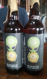 The Alien Twins
